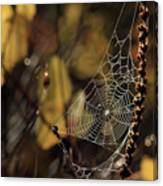 A Spiders Creation Canvas Print