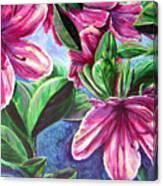 A Splash Of Spring Canvas Print