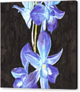 A Spray Of Orchids Canvas Print