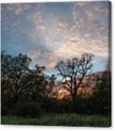 A Spring Evening Canvas Print