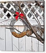 A Squirrel Christmas Canvas Print