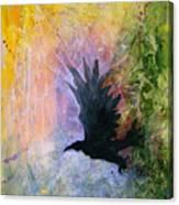 A Stately Raven Canvas Print