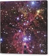 A Stellar Nursery Located Towards Canvas Print