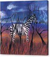 A Stormy Night For A Zebra  Canvas Print