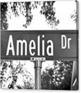 Am - A Street Sign Named Amelia Canvas Print