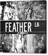 Fe - A Street Sign Named Feather Canvas Print
