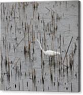 A Stroll Through The Marsh Canvas Print