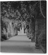 A Stroll Under The Vines Bw Canvas Print