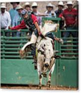 A Strong Bull Ride Canvas Print