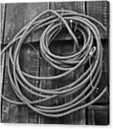 A Study Of Wire In Gray Canvas Print