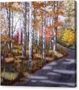 A Sunny Autumn Day Canvas Print