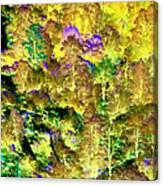 A Surreal Environment Canvas Print