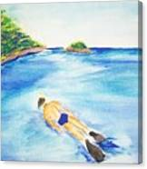 A Swim In Cayos Canvas Print