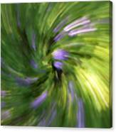 A Swirl Of Color Abstract Canvas Print