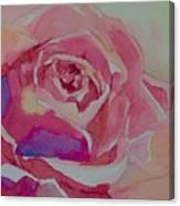 A Tale Of A Rose  Canvas Print