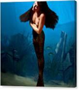 A Temple Mermaid Canvas Print