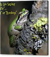 A Terrific Frog #1 Canvas Print