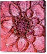A Touch Of Coral Canvas Print