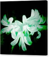 A Touch Of Green On The Lilies Canvas Print