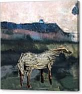A Tough Horse  Canvas Print