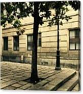 A Tree Grows In Barcelona Canvas Print