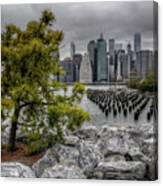 A Tree Grows In Brooklyn Looking At Manhattan Canvas Print