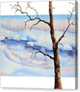 A Tree In Another Dimension Canvas Print