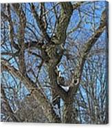 A Tree In Winter- Vertical Canvas Print