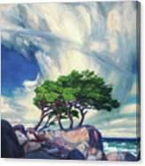 A Tree On The Seashore Reef Canvas Print