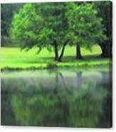 A Tree Reflected Canvas Print