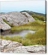 A Vernal Pool Atop A Subalpine Granite Balds Canvas Print