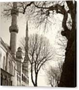 A View From Blue Mosque Canvas Print