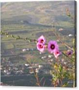 A View From Mt. Arbel Canvas Print