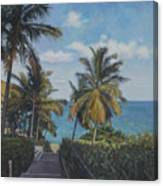 A View In The Virgin Islands Canvas Print