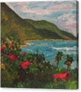 A View Of Carambola Canvas Print