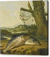 A View On The River Derwent At Belper Derbyshire With A Salmon And A Grayling On The Bank Canvas Print