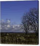 A View So Blue Canvas Print