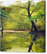 A Waccamaw Evening Canvas Print