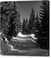 A Walk In Bavaria 2 Canvas Print