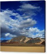 A Walk In The Desert Canvas Print