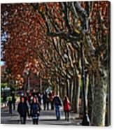 A Walk In The Park - Valencia Canvas Print