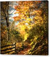 The Lighted Path Canvas Print