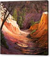 A Walk Through The Canyon Canvas Print