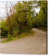 A Winding Road 2  Canvas Print