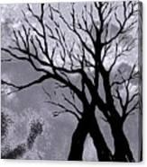 A Winter Night Silhouette Canvas Print