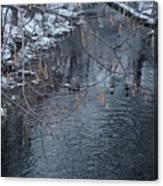 A Winter Swim Canvas Print
