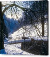 A Winter Walk In The Black Forest Canvas Print
