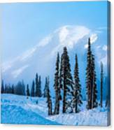 A Wintry Day On Mt Rainier Canvas Print