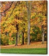 A Wonderful Walk In The Park Canvas Print