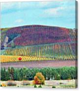 A Yamhill Co. Vineyard Canvas Print